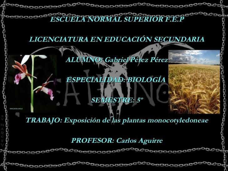 <ul><li>ESCUELA NORMAL SUPERIOR F.E.P </li></ul><ul><li>LICENCIATURA EN EDUCACIÓN SECUNDARIA </li></ul><ul><li>ALUMNO: Gab...