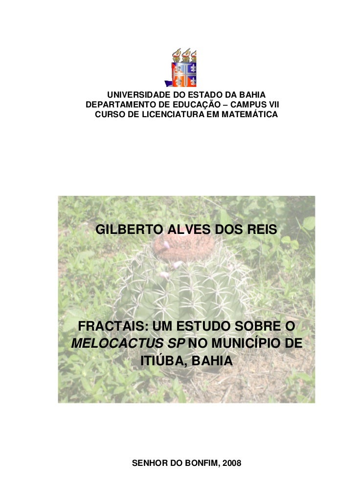 Monografia Gilberto Matemática 2008
