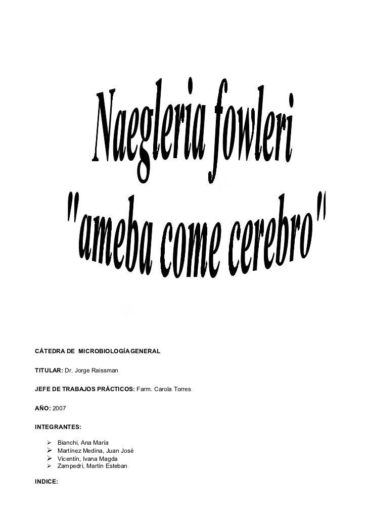 Monografía de Naegleria fowleri