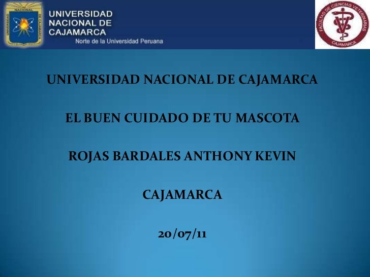 UNIVERSIDAD NACIONAL DE CAJAMARCA<br />EL BUEN CUIDADO DE TU MASCOTA<br />ROJAS BARDALES ANTHONY KEVIN<br />CAJAMARCA<br /...