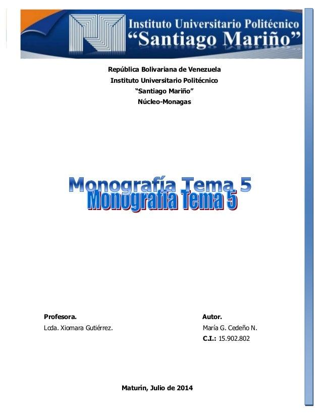 investigacion mercado monografia:
