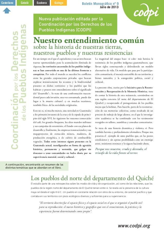 CODPI. Boletín Monográfico nº 9 Julio de 2013
