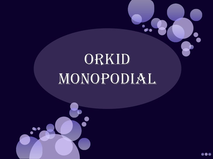 ORKID MONOPODIAL