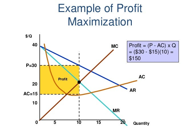 Profit Maximization Vs Wealth Maximization Custom Paper Writing Service