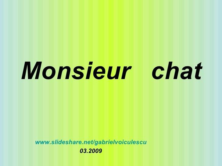 Monsieur  chat www.slideshare.net/gabrielvoiculescu 03.2009