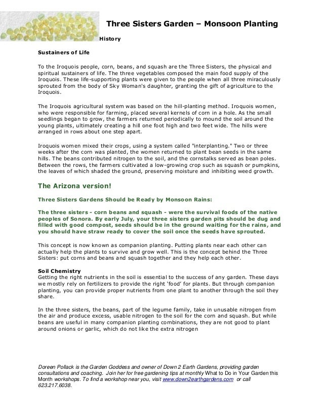 Three Sisters Garden – Monsoon Planting                          HistorySustainers of LifeTo the Iroquois people, corn, be...