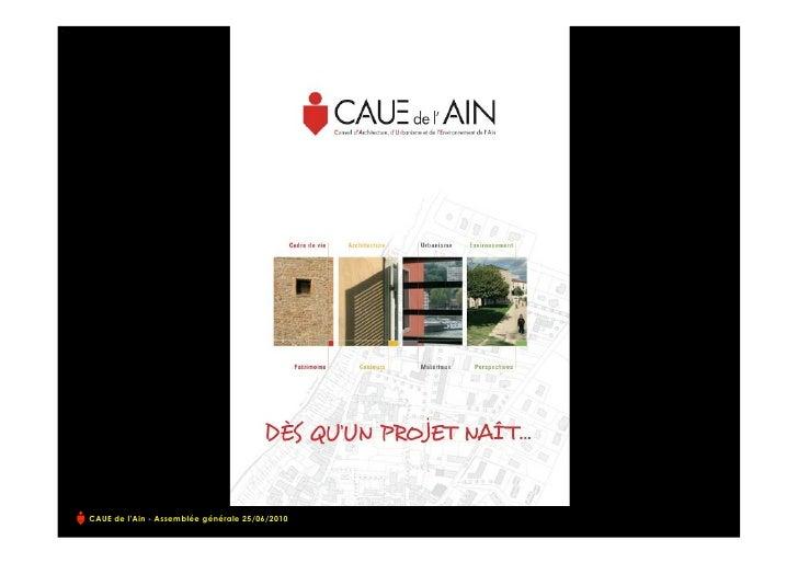 AG2010_CAUEAin