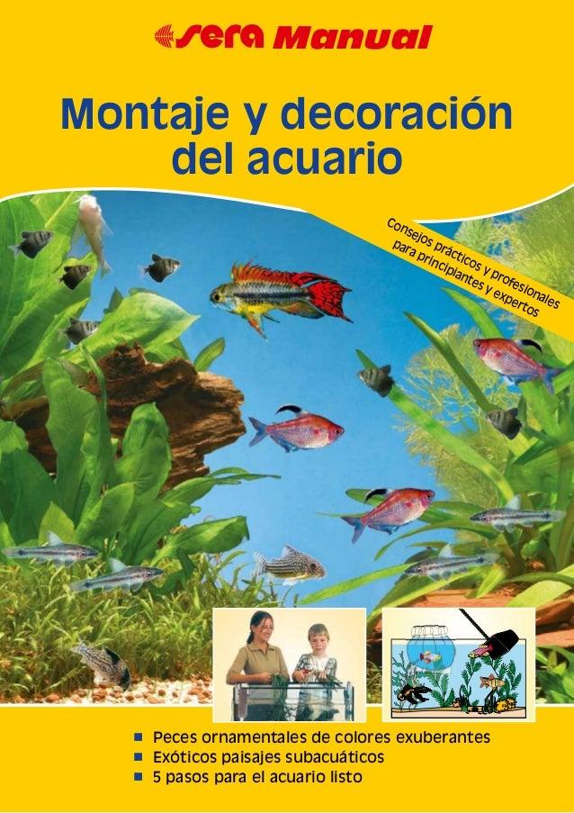n Peces ornamentales de colores exuberantes n Exóticos paisajes subacuáticos n 5 pasos para el acuario listo 67 Manual Mon...