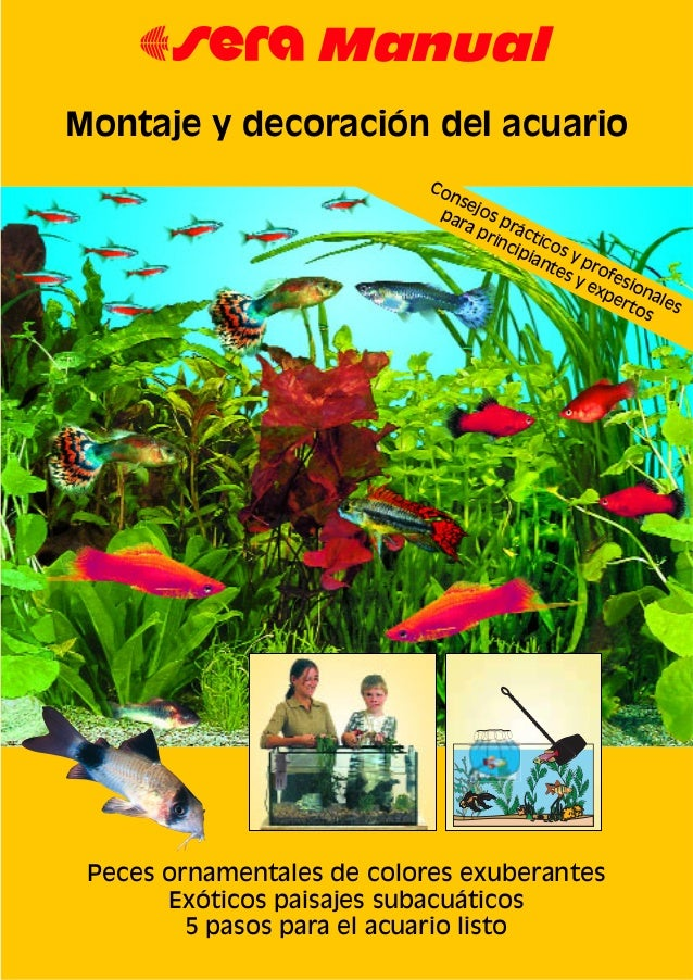 Montaje y decoracion del acuario manual 2 - Montaje de acuarios ...