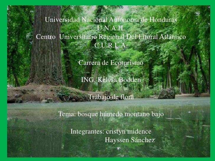 Universidad Nacional Autónoma de Honduras<br />U.N.A.H.<br />Centro  Universitario Regional Del Litoral Atlántico<br />C.U...