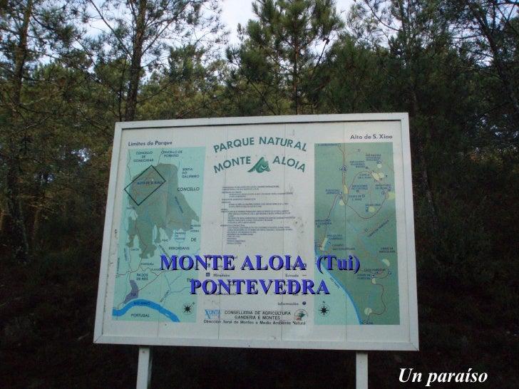 MONTE ALOIA  (Tui) PONTEVEDRA Un paraíso