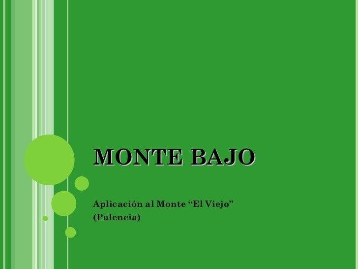 """MONTE BAJO Aplicación al Monte """"El Viejo"""" (Palencia)"""