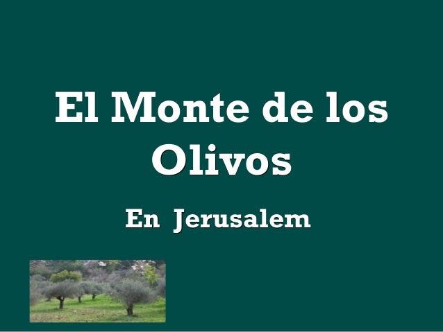 MONTE DE LOS OLIVOS