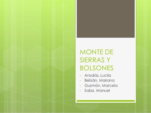 MONTE DE SIERRAS Y BOLSONES • Ansalás, Lucila • Belizán, Mariana • Guzmán, Marcela • Saba, Manuel