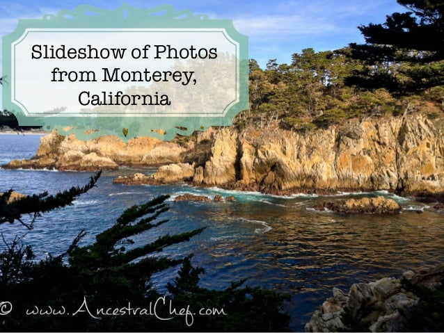 Slideshow of Photos from Monterey, California