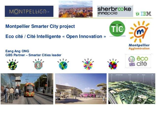 RDV des TIC 2013 | Montpellier Agglomération et IBM France