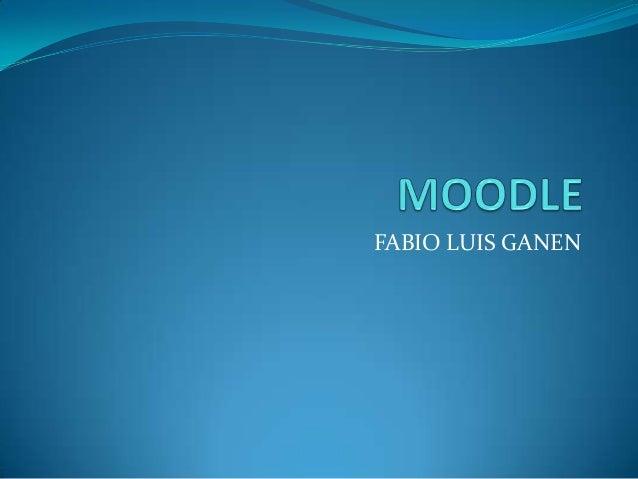 FABIO LUIS GANEN