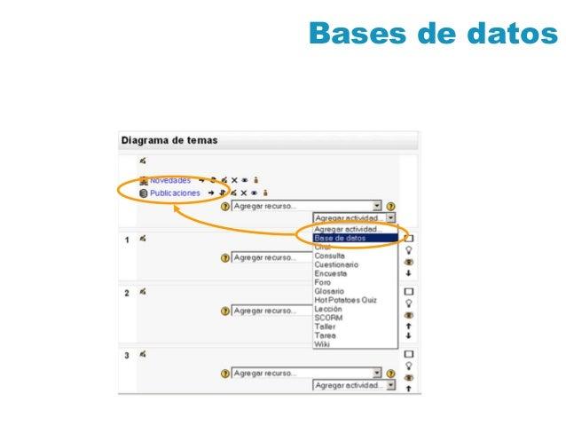 Moodle 1.9 Bases de_datos