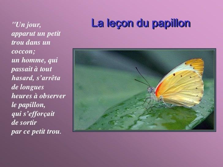 """""""Un jour,            La leçon du papillonapparut un petittrou dans uncoccon;un homme, quipassait à touthasard, s'arrêtade ..."""