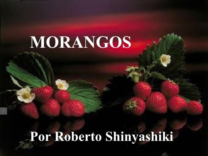 Morangos Roberto Shinyashiki Som