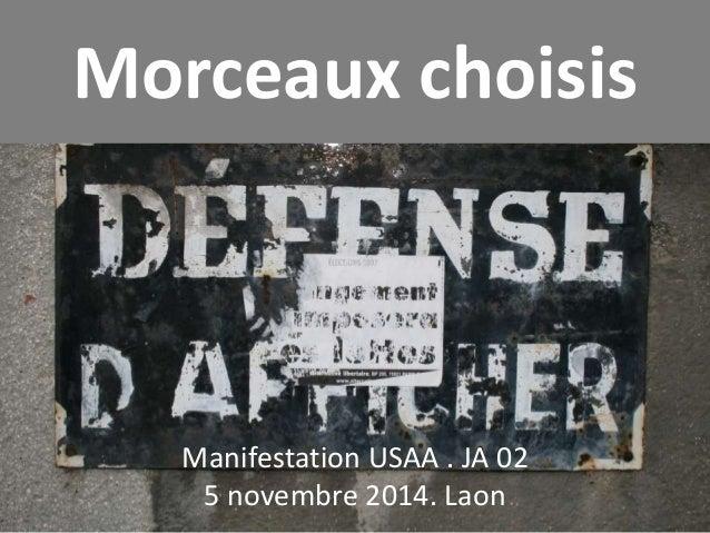 Morceaux choisis  Manifestation USAA . JA 02  5 novembre 2014. Laon