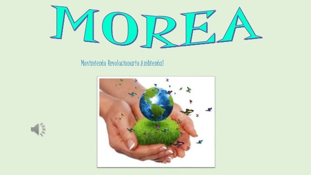 Movimiento Revolucionario Ambiental