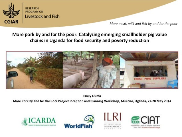 More pork by and for the poor: Catalyzing emerging smallholder pig value chains in Uganda for food security and poverty re...