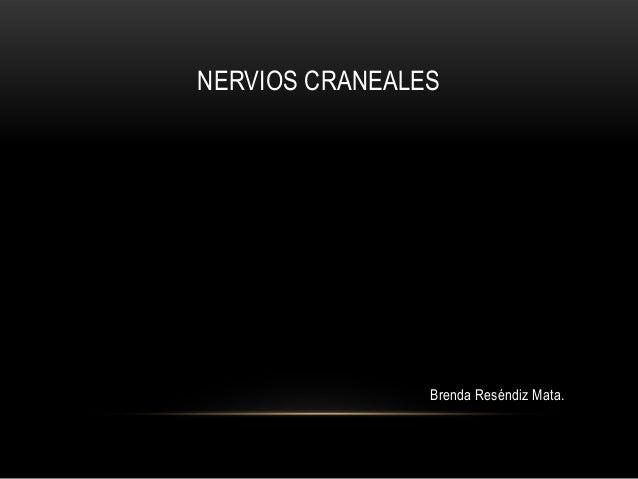 NERVIOS CRANEALES                Brenda Reséndiz Mata.
