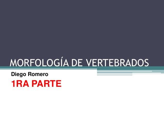 MORFOLOGÍA DE VERTEBRADOSDiego Romero1RA PARTE
