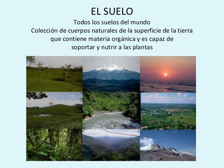 EL SUELO Todos los suelos del mundo Colección de cuerpos naturales de la superficie de la tierra que contiene materia orgá...