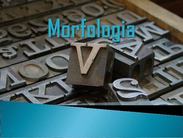 A Gramática é estudada sob os seguintes aspectos: Fonologia= Estudo dos sons das palavras; Morfologia= Classificação das...