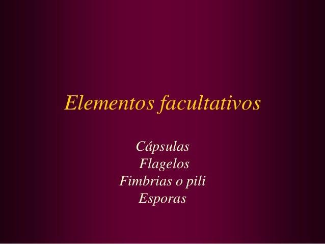 Elementos facultativos Cápsulas Flagelos Fimbrias o pili Esporas