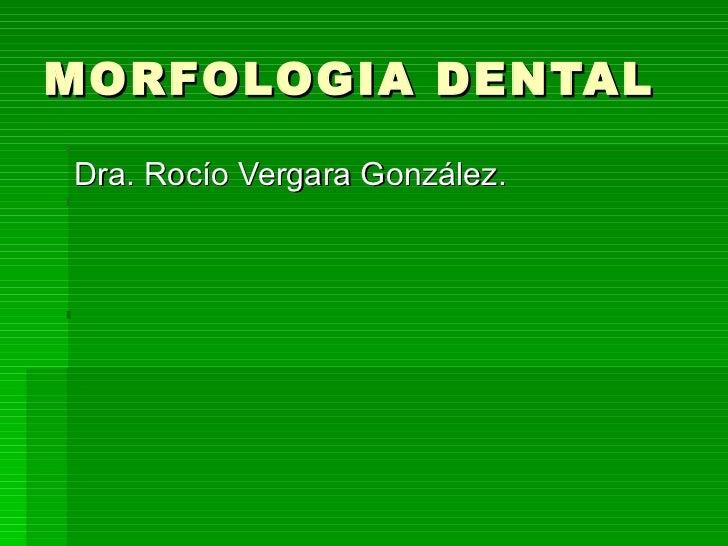 MORFOLOGIA DENTAL <ul><li>Dra. Rocío Vergara González. </li></ul>