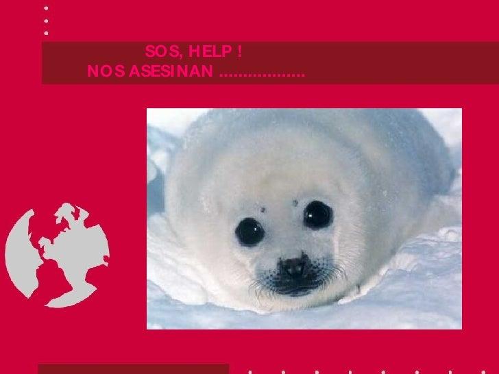 SOS, HELP !  NOS ASESINAN ..................