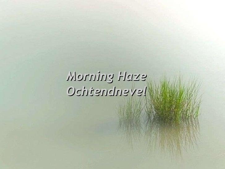 Morning Haze Ochtendnevel