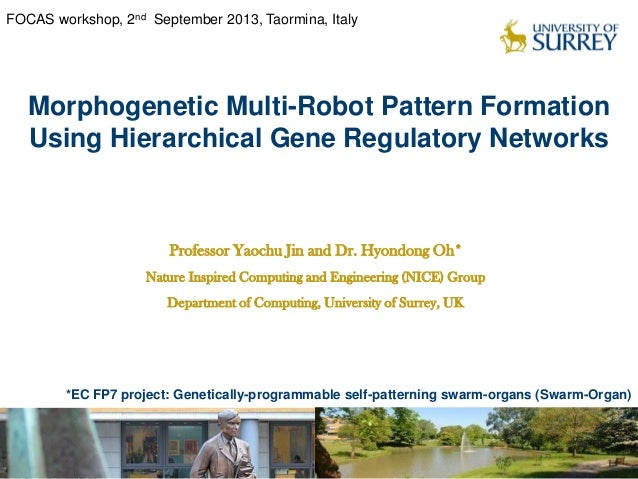 Morphogenetic Multi-Robot Pattern Formation Using Hierarchical Gene Regulatory Networks