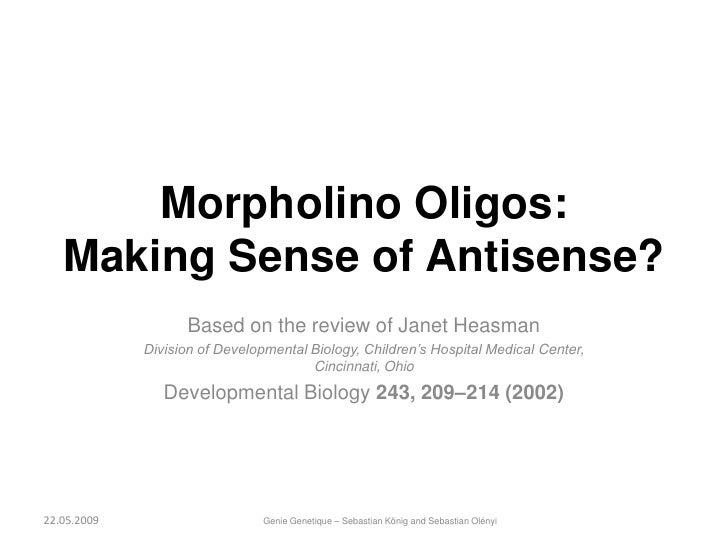 Morpholino Oligos:    Making Sense of Antisense?                    Based on the review of Janet Heasman              Divi...