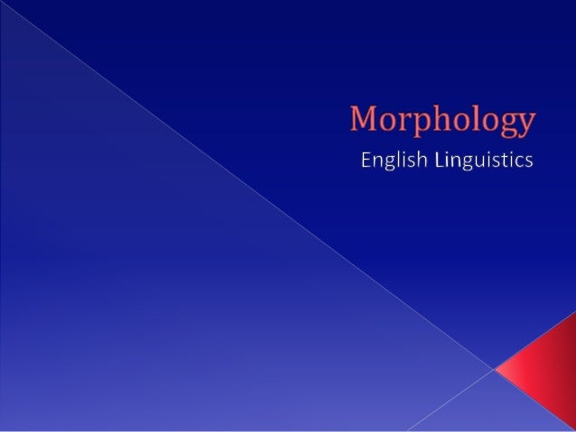    Morphology is the study of    the patterns of word formation in a particular lan    guage.   It is the identification...