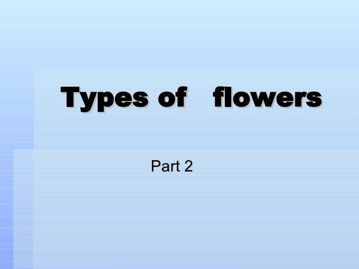 Morphology Of The  Flower Part 2