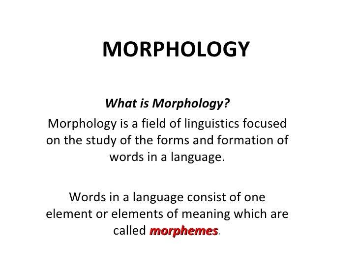 Morphology Son