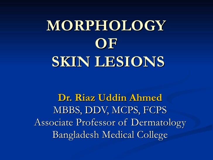 Morphology of skin lesions