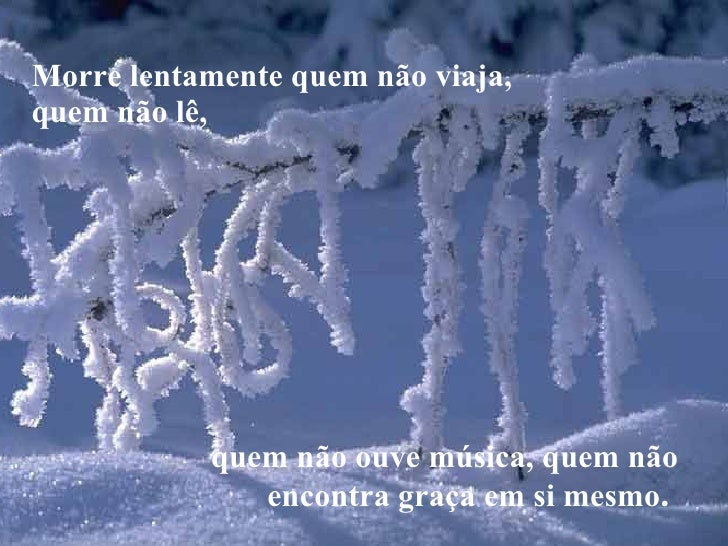 Morre Lentamente No Gelo