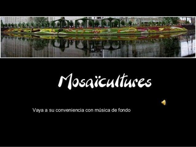Mosaiculturesinternationales
