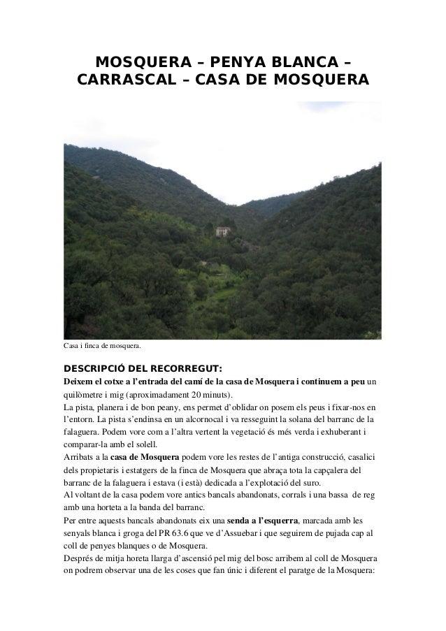 MOSQUERA – PENYA BLANCA – CARRASCAL – CASA DE MOSQUERA Casaifincademosquera. DESCRIPCIÓ DEL RECORREGUT: Deixemelcotx...