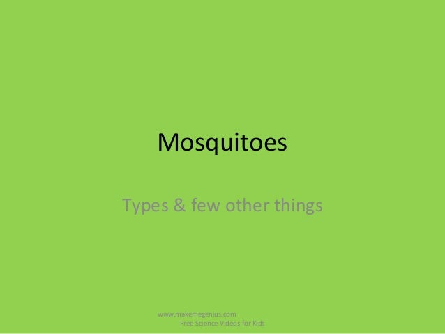 MosquitoesTypes & few other thingswww.makemegenius.comFree Science Videos for Kids