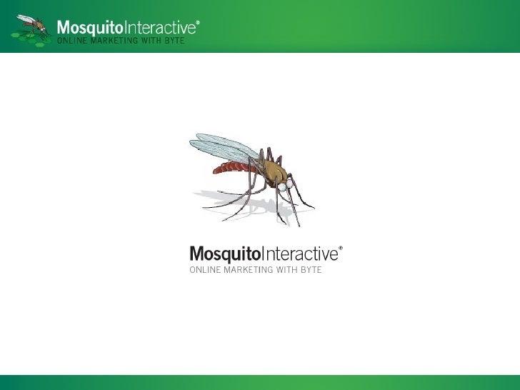 Mosquito Power Point Presentation