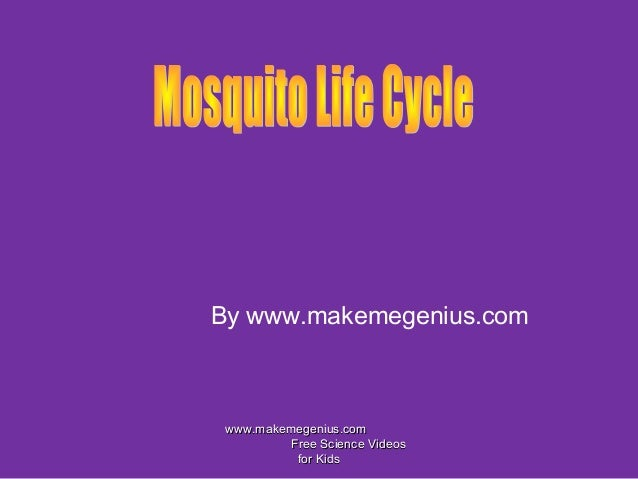 By www.makemegenius.comwww.makemegenius.comwww.makemegenius.comFree Science VideosFree Science Videosfor Kidsfor Kids