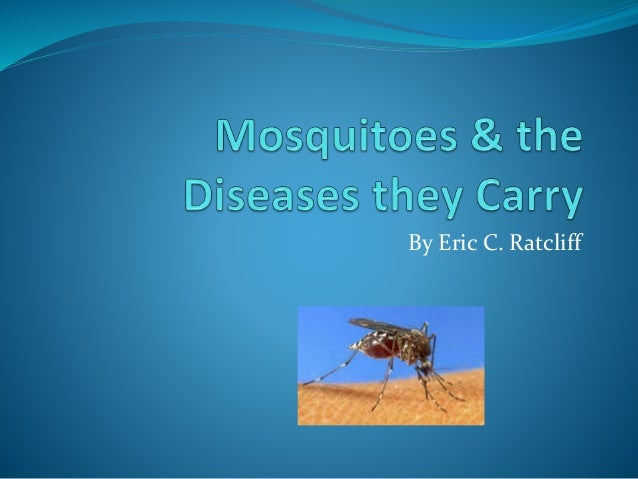Mosquitos and the Diseases they Carry
