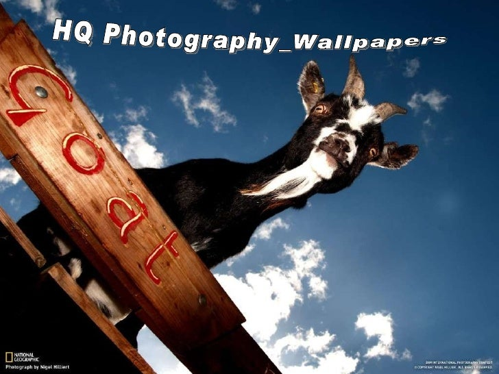 HQ Photography_Wallpapers