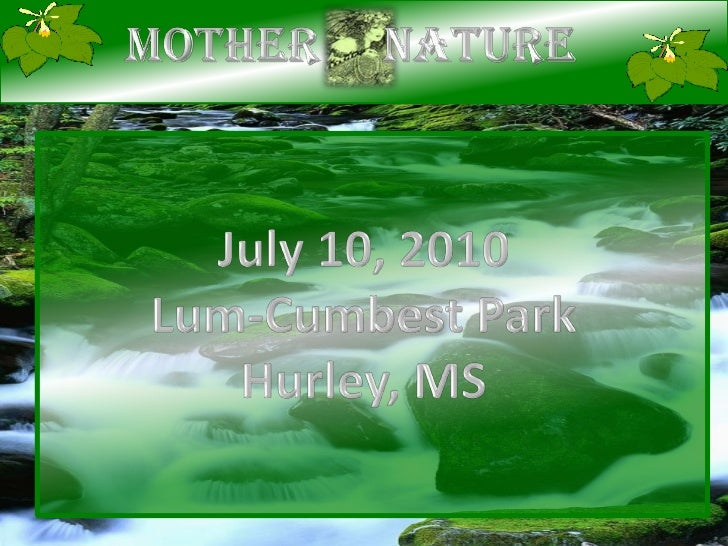 Mother     Nature<br />July 10, 2010<br />Lum-Cumbest Park<br />Hurley, MS<br />